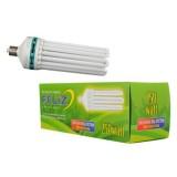 Feliz Dual Spectrum Fluorescent 125 Watt