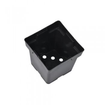 Square Plastic Pot (Magnum) 6 in x 6 in x 7 in